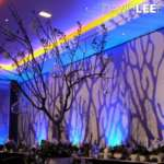 Party & Event Lighting